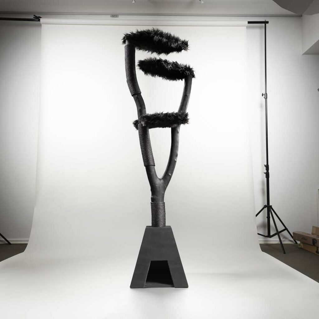 large fancy designer black cat scratching post being photographed